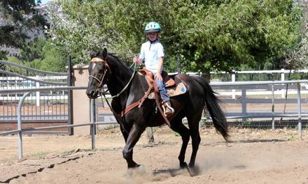 Rivera Equestrian, LLC