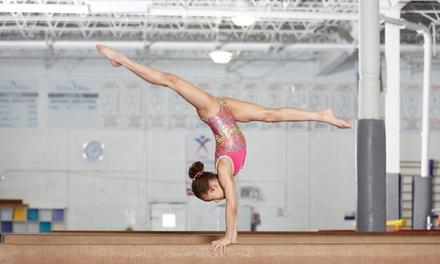 Greater Kalamazoo World of Gymnastics