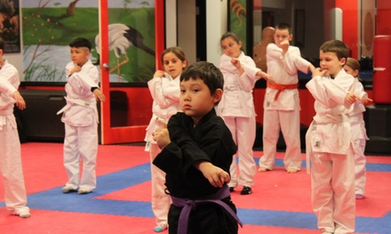 United Studios of Self Defense - Laguna Beach
