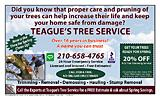 Teague's Tree Service