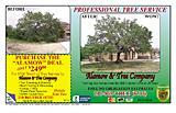 Alamow & Tree Company