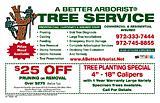 A Better Arborist