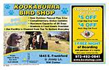 Kookaburra Bird Shop