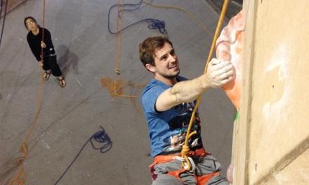 Rocksport Climbing Gym Louisville