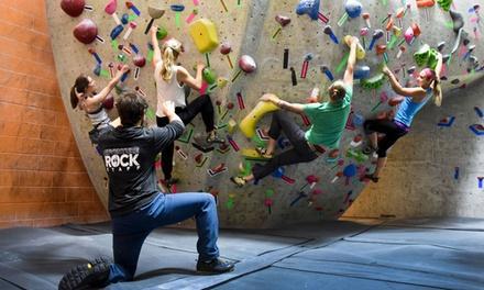 Adventure Rock Indoor Climbing Gym