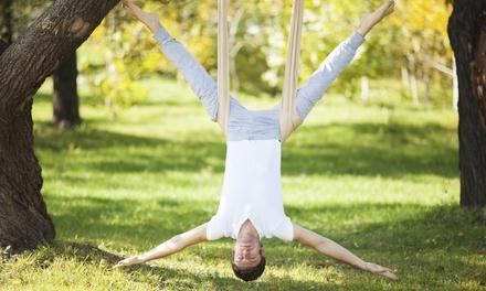 Kudzu: Aerial Fitness & Kinetic Arts