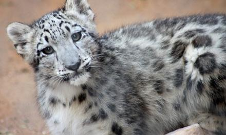 Micke Grove Zoological Society