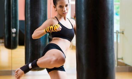 Evolution Martial Arts & Fitness