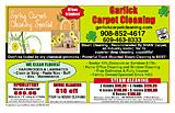 Garlick Carpet Cleaning Services