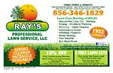 Ray's Professional Lawn Service