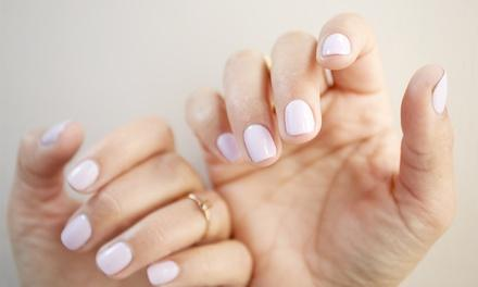 Select Nails by Sandra
