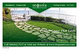 Sequoia Synthetic Grass
