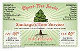 Santiago Arevalo Tree Service