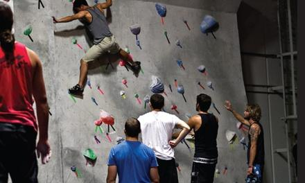 Aesthetic Climbing Gym