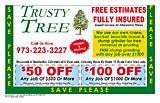 Trusty Tree
