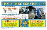 Ticos  Tree  Service  LLC