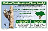 New Jersey Tree Management Ser