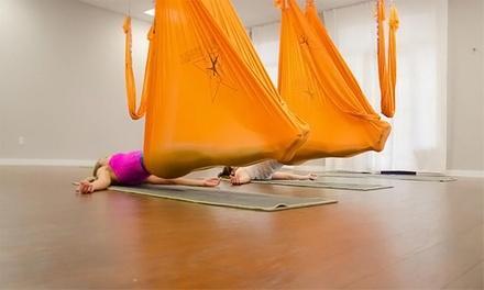 Palm Beach Athletic Wear & Yoga
