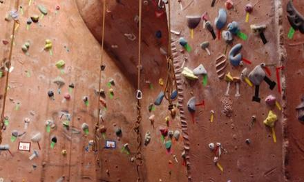Stoneworks Inc Climbing Gym