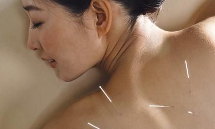 The Qi Spot Acupuncture Clinic