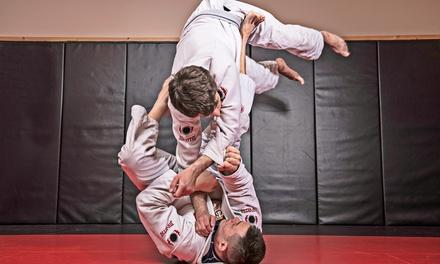 El Dorado Hills Brazilian Jiu Jitsu