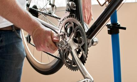 Top Gear Bicycle Shop