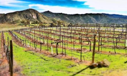 Orfila Vineyards & Winery