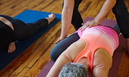 Bikram Yoga College of India