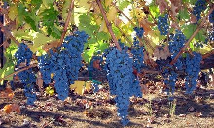 Heller Estate Organic Vineyards