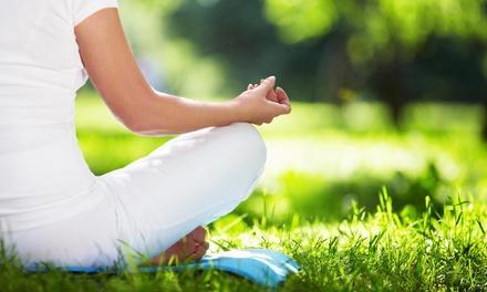 Hidden Acres Yoga