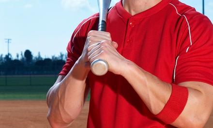 Next Level Baseball