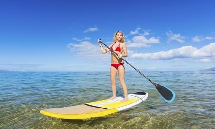 Buena Vista Watersports or Little Harbor Beach Resort