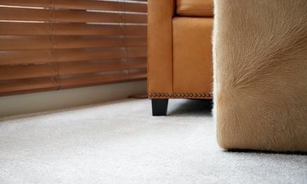 All City Carpet Cleaning