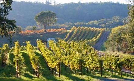 Palaia Vineyards
