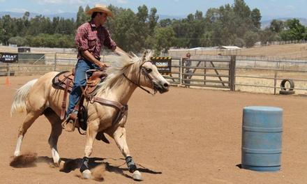 ML Performance Horses