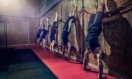 Mile High Monkey Bar Gym