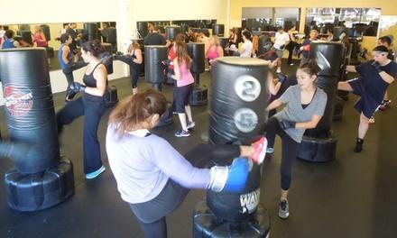 MAX Martial Arts & Fitness