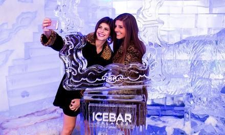 Ice Bar Orlando
