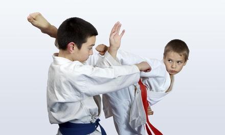 Kissaki-Kai Karate DO