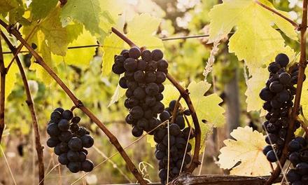 Helvetia Vineyards