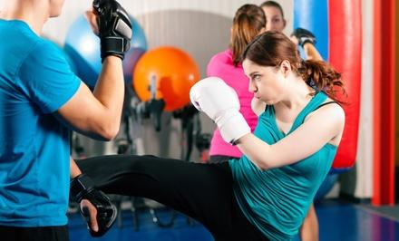 McCoy's Action Karate
