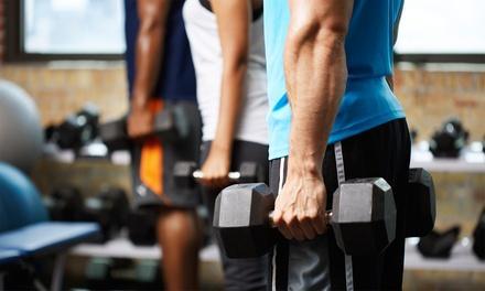 146 Fitness