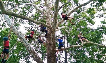 EarthJoy Tree Adventures