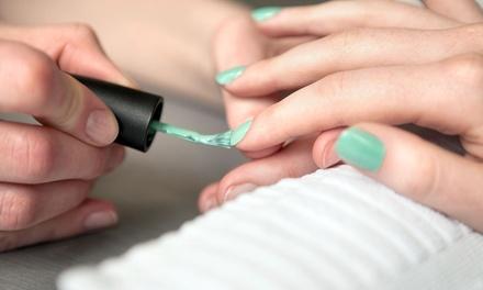 True Colors Concept Salon & Spa