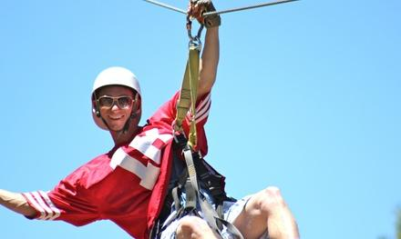 Action Segway and Zipline Tours