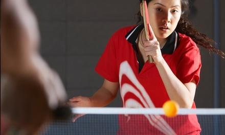 USA Valley Table Tennis