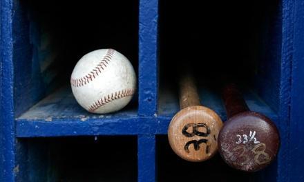 The Cage Baseball