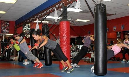 Combat Performance & Fitness