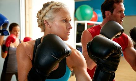 oneFIGHT Boxing & Fitness Club