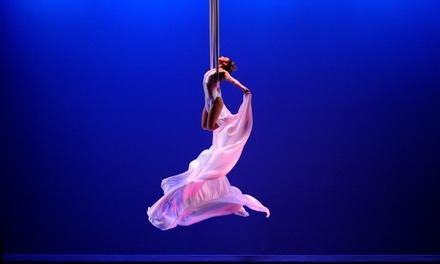 Aerial Cirque Nyc